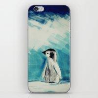 Baby Penguin iPhone & iPod Skin