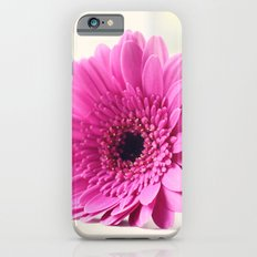 Gerbera on the Windowsill iPhone 6s Slim Case