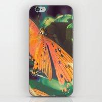Autumn Spirit Flight iPhone & iPod Skin