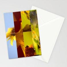 crash_ 03 Stationery Cards