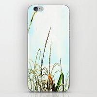 Reach for the Clouds iPhone & iPod Skin