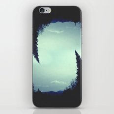 Leaning Spruce iPhone & iPod Skin