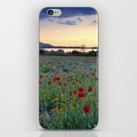 Red Poppies. Sunset at the lake iPhone & iPod Skin