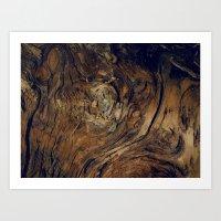 Bark Patterns Art Print