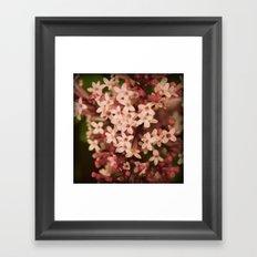 Sweet Lilac Breeze Framed Art Print