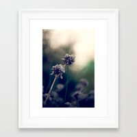 Inside the Shadow Framed Art Print