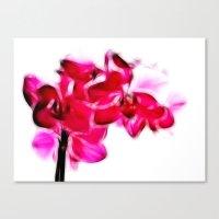 Fractalius pink orchid Canvas Print