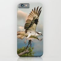 Osprey With Nesting Mate… iPhone 6 Slim Case