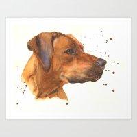 dog art, dogs, rhodesian ridgeback, dog painting, beautiful dog, dog lovers Art Print