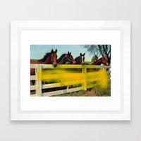 Untitled (Horses) Framed Art Print