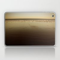 Seagulls on the Horizon Laptop & iPad Skin
