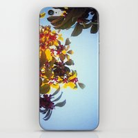 The Red Berry Tree (An I… iPhone & iPod Skin