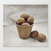 Eat my nuts Canvas Print