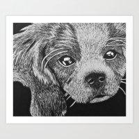 Cavalier puppy Art Print