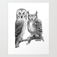 Bubo and Strix Art Print