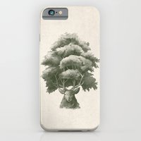 Old Growth  iPhone 6 Slim Case