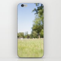 Another Sunny Day iPhone & iPod Skin