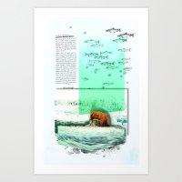 Alaskan Brown Bear Art Print