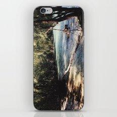 Lagoon iPhone & iPod Skin