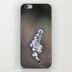 Flower stem iPhone & iPod Skin