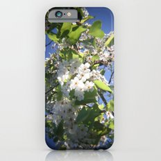 blossoms on vermont iPhone 6 Slim Case