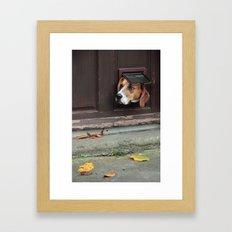 A Window to the World Framed Art Print