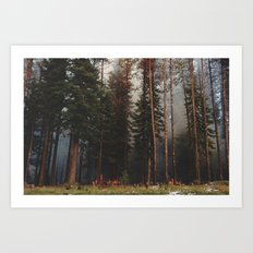 Oregon Forest Control Fire Art Print