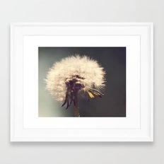 Lonely Dandelion Framed Art Print
