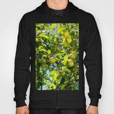 Swedish apples Hoody