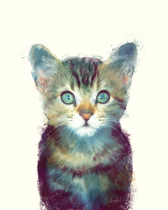 Cat // Aware Canvas Print