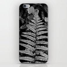 fern leaf VI iPhone & iPod Skin