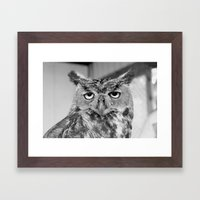 Who Who Me? Framed Art Print
