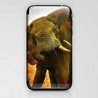 Mad Elephant iPhone & iPod Skin