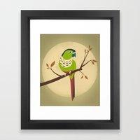 Green Cheek Conure Framed Art Print