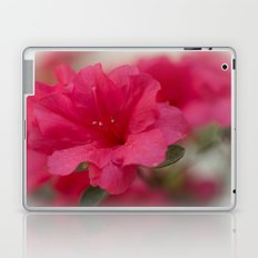 Pink Azalea  Laptop & iPad Skin