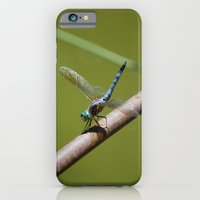 Dragonfly iPhone 6 Slim Case