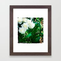Narcissus Framed Art Print