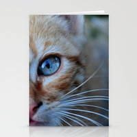 Cat Eyes Stationery Cards