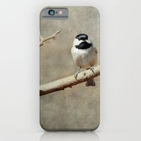 Black-capped Chickadee iPhone 6 Slim Case