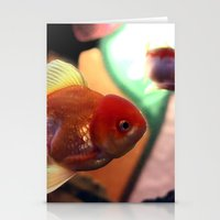 Freshwater Gold Fish Stationery Cards
