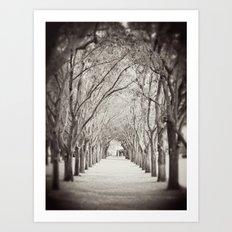 Follow the path Art Print