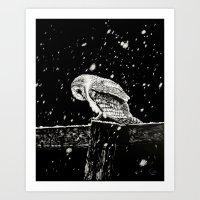 Snowfall at Night (Owl) Art Print