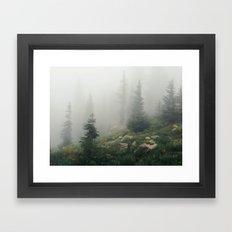 Mt Hood National Forest Framed Art Print