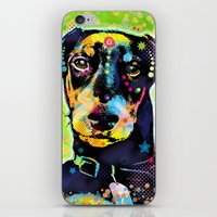 Dachshund iPhone & iPod Skin
