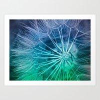 Blue Dandelion Art Print