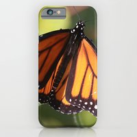 Monarch Butterfly iPhone 6 Slim Case