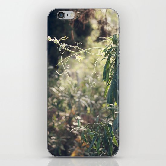 Urban Jungle iPhone & iPod Skin