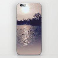 Winter lake iPhone & iPod Skin