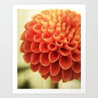 Red Petal Queen Art Print