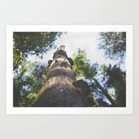 Forest Tree Art Print